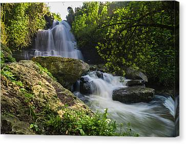 Branch Hill Pond Canvas Print - Bajouca Waterfall IIi by Marco Oliveira