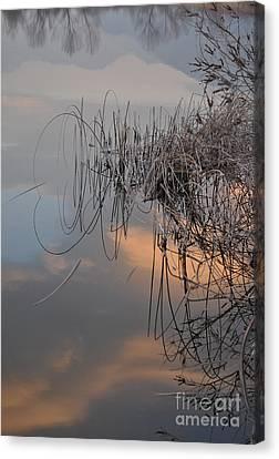 Balance Of Elements Canvas Print by Simona Ghidini