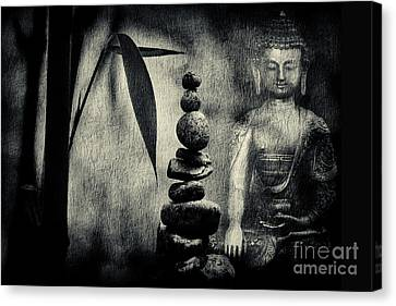 Balance Canvas Print by Tim Gainey