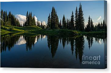 Balanced Reflection Canvas Print by Mike Reid