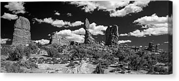Balanced Rock Canvas Print by Larry Carr