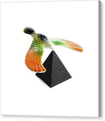 Balancing Bird Toy Canvas Print by Science Photo Library