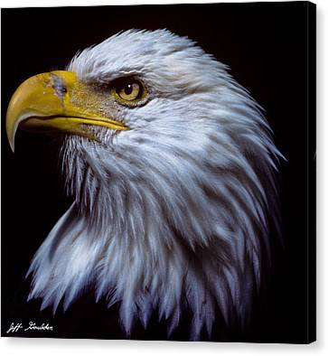 Canvas Print featuring the photograph Bald Eagle by Jeff Goulden