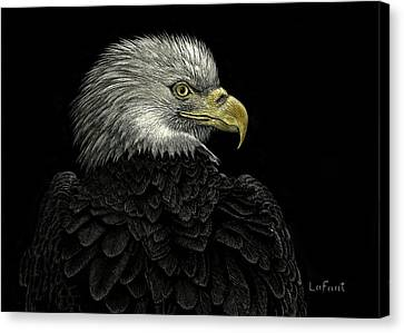 American Bald Eagle Canvas Print by Sandra LaFaut