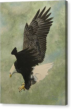 Canvas Print featuring the painting Bald Eagle by Stan Tenney