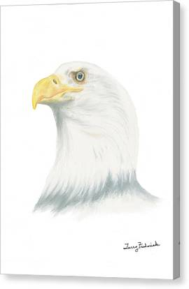 Canvas Print featuring the drawing Bald Eagle by Terry Frederick