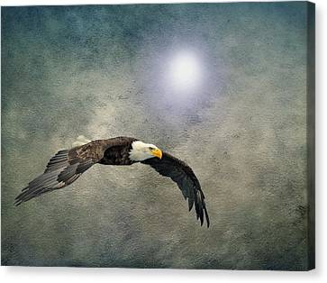 Bald Eagle Textured Art Canvas Print by David Dehner
