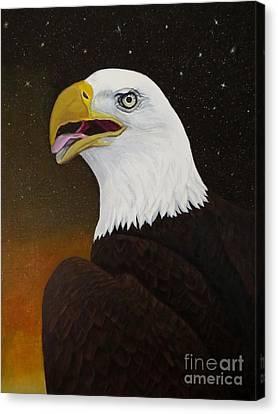 Bald Eagle Canvas Print by Zina Stromberg