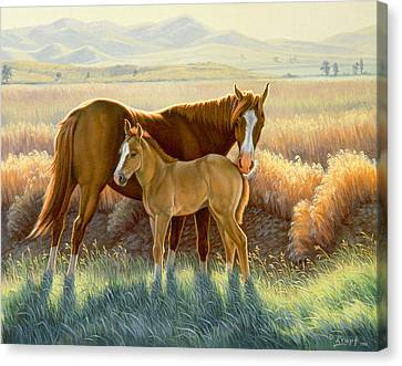 Bald-faced Sorrel And Colt Canvas Print by Paul Krapf