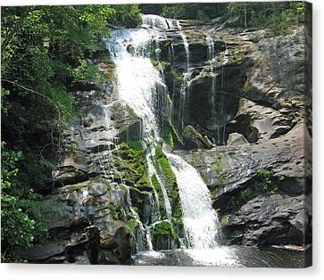 Bald River Falls Canvas Print by Laura Watts