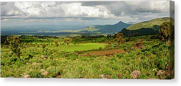 Bales Canvas Print - Bale Mountains National Park by Roger De La Harpe