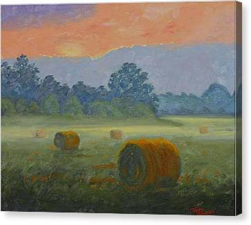 Bales At Dawn Canvas Print by Tommy Thompson