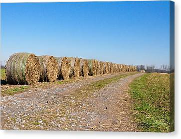 Bales Of Hay On An Old Farm Road Canvas Print by Bill Cannon