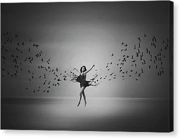 Ballerina Flight Of Birds Canvas Print