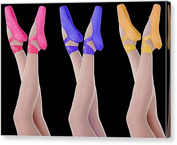 Ballet Shoes Canvas Print by Stephen Norris