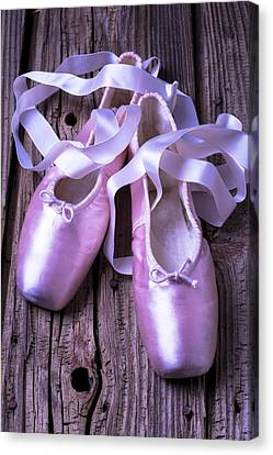 Performers Canvas Print - Ballet Slippers by Garry Gay