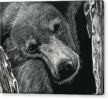 Baloo Canvas Print