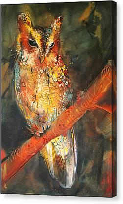 Balsas Screech Owl Canvas Print by Sharlena Wood