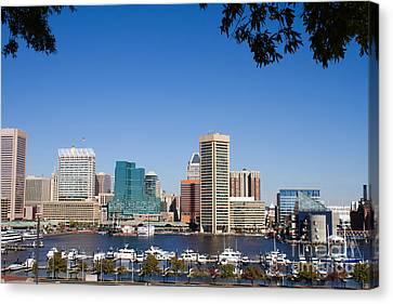 Baltimore Harbor Skyline Canvas Print