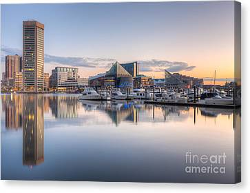 Baltimore Inner Harbor Skyline At Dawn II Canvas Print by Clarence Holmes
