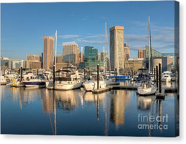 Baltimore Inner Harbor Skyline I Canvas Print by Clarence Holmes