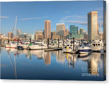 Baltimore Inner Harbor Skyline II Canvas Print by Clarence Holmes