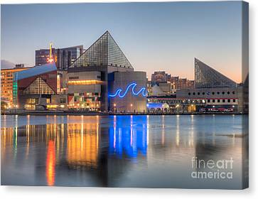 Baltimore National Aquarium At Dawn IIi Canvas Print by Clarence Holmes