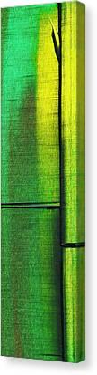Bam Bamboo 1-b Canvas Print by Brian Allan