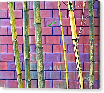 Bamboo And Brick Canvas Print by Ethna Gillespie