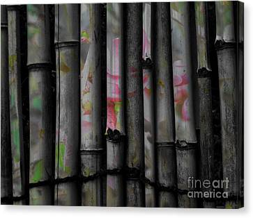 Bamboo Blossom Canvas Print by Charles Majewski