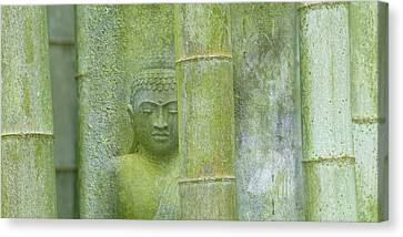 Bamboo Buddha Canvas Print