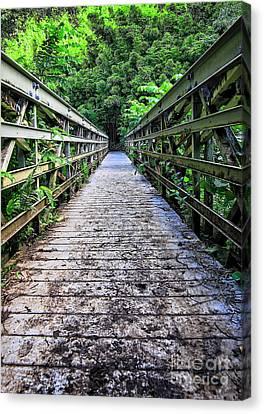 Bamboo Forest Bridge Canvas Print