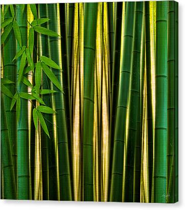 Bamboo Forest- Bamboo Artwork Canvas Print by Lourry Legarde