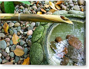 Bamboo Fountain Canvas Print by Michelle Wolff
