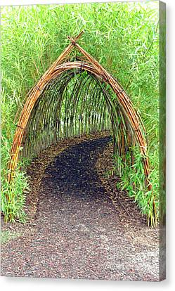 Bamboo Tunnel Canvas Print by Olivier Le Queinec