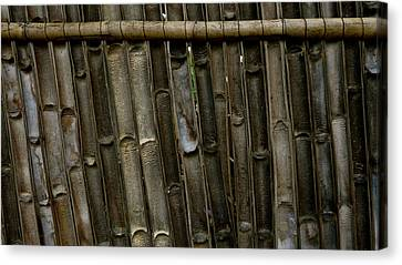 Bamboo Underside Wall Canvas Print by Eye Browses