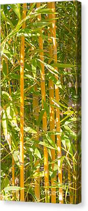 Bamboo Vertical Canvas Print by Christina Rahm