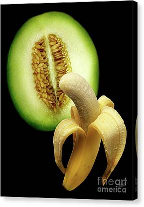 Banana And Honeydew Canvas Print by Peter Piatt