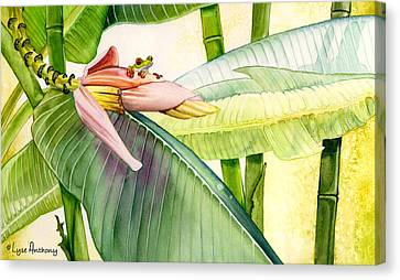 Frog Watercolor Canvas Print - Banana Bloom by Lyse Anthony