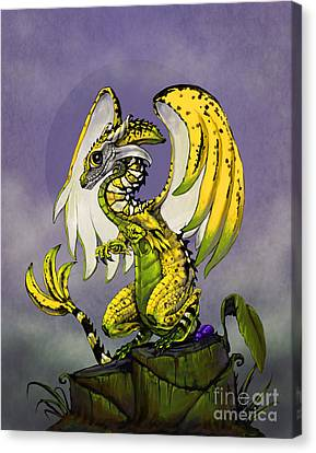 Banana Dragon Canvas Print by Stanley Morrison