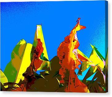 Banana Skies Canvas Print by Rebecca Flaig