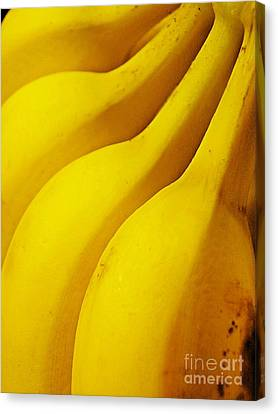 Bananas Canvas Print by Sarah Loft