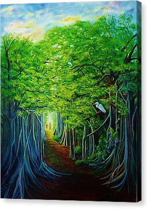 Banyan Walk Canvas Print
