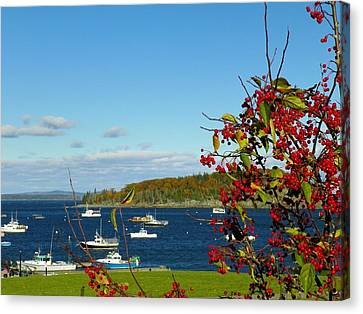 Canvas Print featuring the photograph Bar Harbor by Gene Cyr