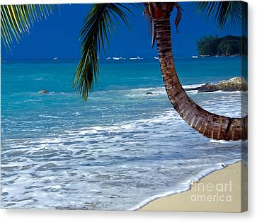 Barbados Beauty Canvas Print by Sophie Vigneault