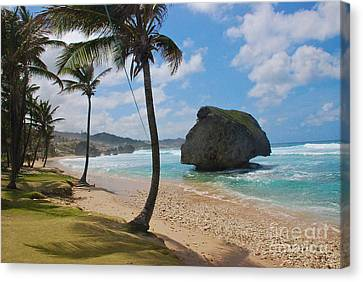 Canvas Print featuring the photograph Barbados by Blake Yeager