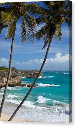 Barbados Canvas Print by Brian Jannsen