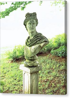 Barbara Cirkva Bust Of Apollo Canvas Print by Dana Gallagher