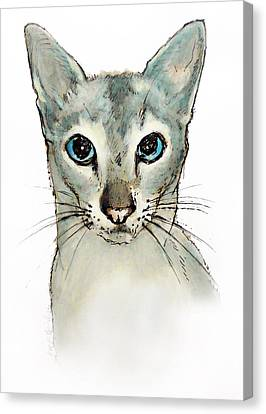 Barbara'cat Canvas Print by Roz McQuillan