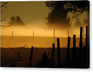 Canvas Print featuring the photograph Barbed Silhouette by Paul Noble